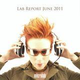 Lab Report June 2011