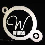 Kryst Musik Le Windsor Lille part 1