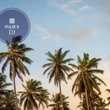 A trip to Ale´s Paradise (may 2019) - PulseR DJ
