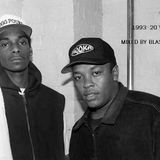 1993 Hip-Hop: 20 years later