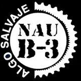 NAU B3 Style