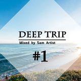 Deep Trip Vol.1