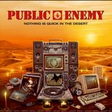 Public Enemy (2017)