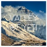 Numbred - Valley Of Yeti (February 2016)