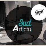 SUD ARTCTU - DECEMBRE 2017