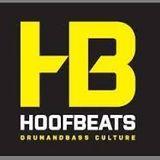 DJ Shai-Ty DJ CONTEST HOOFBEATS OPEN AIR 2015 (25.05.2015)