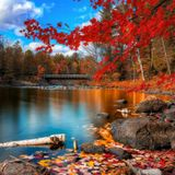 Autum Is Beautiful By Paul Cue (Just House)