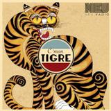 INTERNEU w/C'Mon Tigre