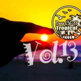 Tropical House Vol. 13
