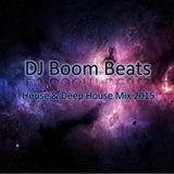 House & Deep House Mix 2014