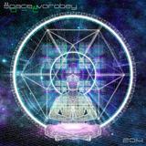 Space Vorobey - 0-T