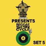 Radio Crown Presents Reggae Spin Cycle's Suburban Hi-Fi Set Five