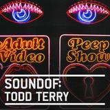 SoundOf: Todd Terry