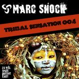 Tribal Sensation 004