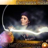Luminosity 2013