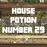 House Potion Number 29