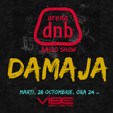 Arena dnb radio show - vibe fm - mixed by DAMAJA - October 28th 2014