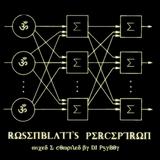 DJ PsyBoy - Rosenblatt's Perceptron