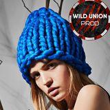 Wild Union Project - Progressive Trance