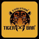 Tiger Bar Birthday Party 20130601