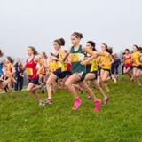 Cross Country is the worst - Rules for the Mexican Wave