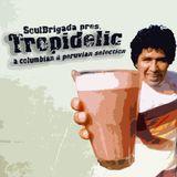 SoulBrigada pres. Tropidelic Vol. 1