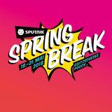 Reche & Recall & die Gebrüder Brett - Live @ Sputnik Spring Break 2018 (05-20-2018)