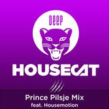 Deep House Cat Show - Prince Pilsje Mix - feat. Housemotion