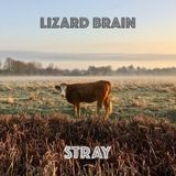 Lizard Brain return with another eclectic mix