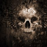 Dj Dark Noise Official