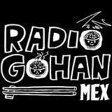 Radio Gohan