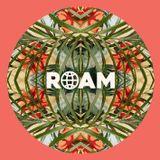 ROAM / ROAM Selectors