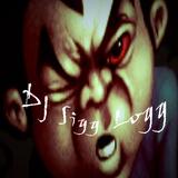 DJ Sigg Logg