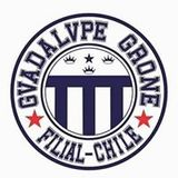 Gvadalvpe Grone Filial Chile