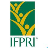 IFPRI Policy Seminar - Apr 18, 2013 - Thomas Jayne