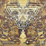 ModernShaman/Caracal Spirit