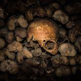 Catacomb_futureunderground