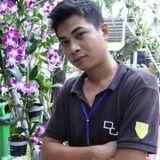 Hoang Huy