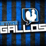 EntreGallos