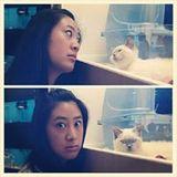 Ashley Huang