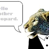 Hello Mother Leopard