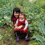 Trinh Bui Thi