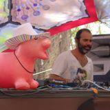 DJ SETIDAT ceitil