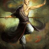 Shaolin Rebel