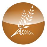 Faith Harvest Church Podcast