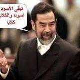 Hatem Soltan