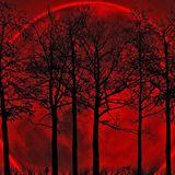 Eclipse aka Dawid Gierczyk # SuCo Podcast N05
