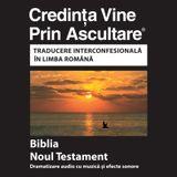 Biblia română -  Romanian Bibl