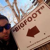 djbigfootbridges (djbfoot)