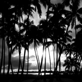 Darker_Than_Paradise